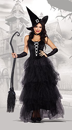Witch Halloween Costumes For Women (Dreamgirl Women's Spell Bound Costume, Black/Silver, X-Large)