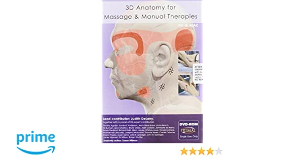 Amazon 3d Anatomy For Massage Manual Therapies Dvd