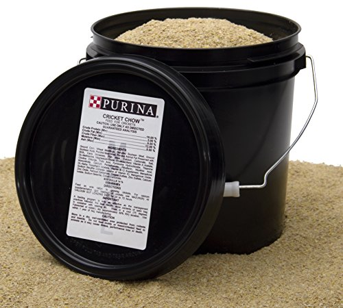 purina-cricket-chow-45-lbs20kg-feed-meal-food-powder-a-complete-breeding-and-rearing-diet-for-mainta
