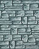 Pacon Corporation Pac56495 Fadeless Flagstone 48In X 50Ft by Pacon