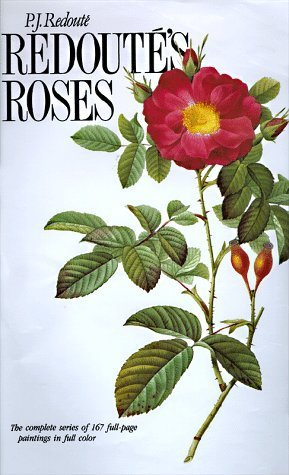 Redoute Roses - 8