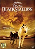 The Young Black Stallion [DVD]
