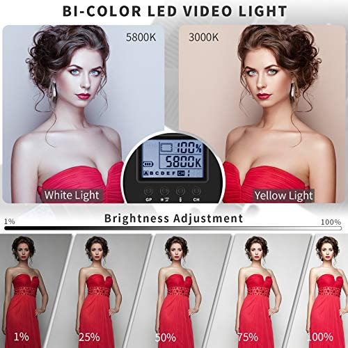 Bi-Color LED Video Light Stand Lighting Kit 2 Pack 15.4'' Large Panel 3000K-5800K 45W 4800LM Dimmable 1-100% Brightness Soft Light for YouTube Game Video Shooting Live Stream Photography Lighting by Dazzne (Image #1)