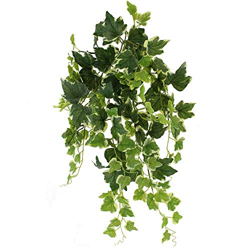 Unique Forest Arts Artificial Wall Hanging Ivy Plants,Faux Plastic Leaves Bushes Artificial Hanging Plants Green Plastic Scindapsus Leaves Fake Ivy Vine Bushes (Set of 3) (Varigated English Ivy ()
