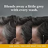 Just For Men Control GX Grey Reducing 2-in-1