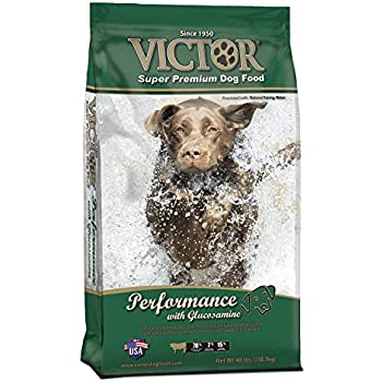 Amazoncom Victor Beef Meal And Brown Rice Formula Dry Dog Food