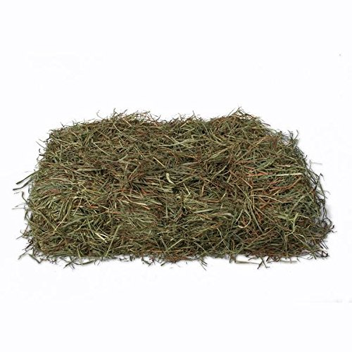 (KMS Hayloft Premium 3rd Timothy Hay for Small Animals (10 lb))