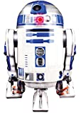 Star Wars: R2-D2: Relive R2-D2's heroic adventures in galactic history and build a foot-tall paper model (Master Models)