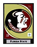 Encore Select 584-49 NCAA Florida State Seminoles Logo Plaque, 9-Inch by 12-Inch