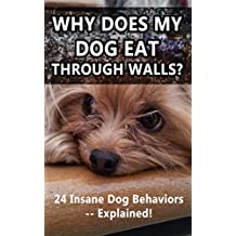 Why Does My Dog Eat Through Walls?: 24 Insane Dog Behaviors -- Explained!