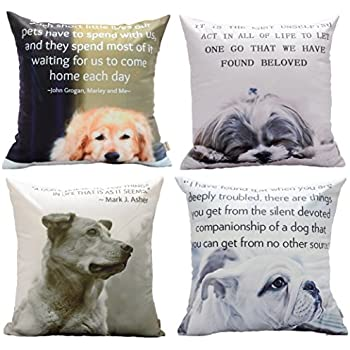 Amazon redland art cute pet golden retriever dog pattern cotton dog with quotes decorative throw pillow square indoor and outdoor super soft cushion cover 18 x 18 inch set of 4 solutioingenieria Gallery