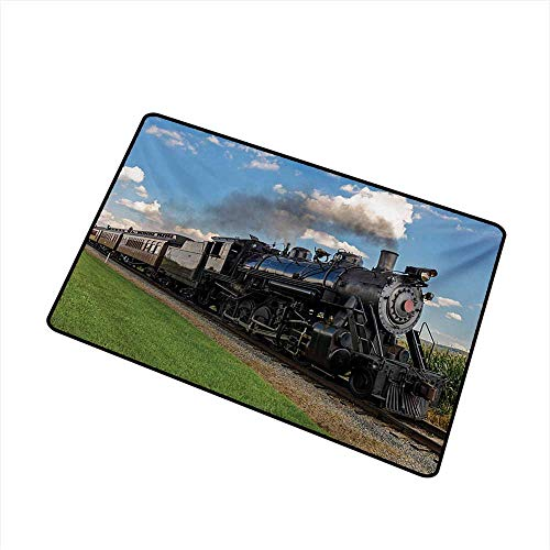 - Axbkl Antibacterial Doormat Steam Engine Vintage Locomotive in Countryside Scenery Green Grass Puff Train Picture W35 xL59 Super Absorbent mud