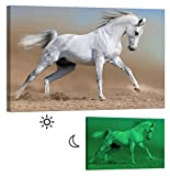 Painting on Canvas. Glow in the Dark Wall Art Print. No Energy Use - Arabian Horse (46 X 32 Inch)