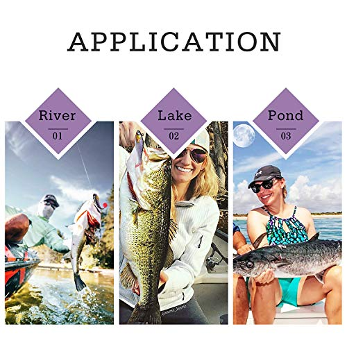 TRUSCEND Power Soft Fishing Lures Pre-Rigged BKK Hook, Japan Formula, Slow Sinking, Swimming, Jerking, Freshwater or Saltwater Swimmer for Bass Trout Pike Fishing, B-2.8in,6PCS