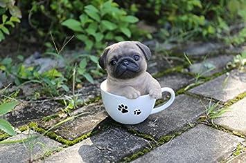 amazon com pet pals teacup pug puppy home kitchen