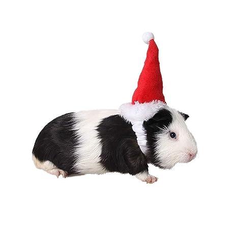 Amakunft Sombrero pequeño de Animal, cobaya, Sombrero de cumpleaños para Gato, Gorro de