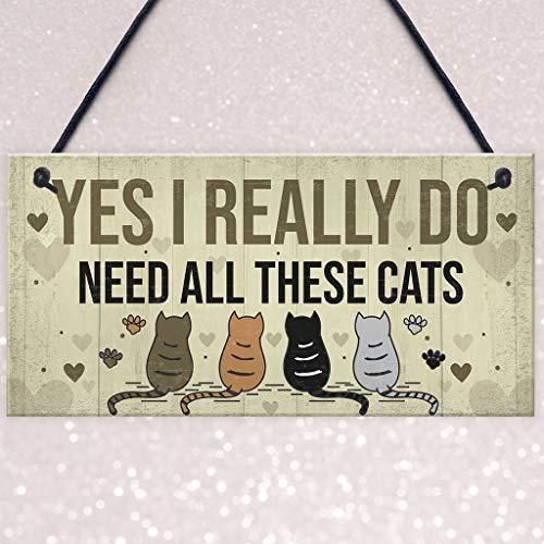 ❤Lemoning❤ YES I Really DO Gift Novelty Birthday Hanging Plaque Gift Wooden Pendant