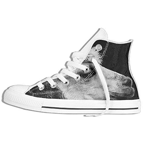 Classic High Top Sneakers Canvas Shoes Anti-Skid Alpaca Lama Casual Walking For Men Women White 7fz9kqr