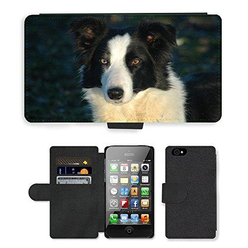 Just Phone Cases PU Leather Flip Custodia Protettiva Case Cover per // M00128450 Tête de chien Border collie Animaux // Apple iPhone 4 4S 4G