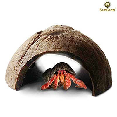 SunGrow Natural Connectable Coco Tunnel Hut for Spiders and Hermit Crabs, Comfy Space for Lizards, Organic Non-Toxic Hideout, Beautify Terrarium, Vivarium, Reptile Tank, Aquarium or 'Crabitat', Large by Marimo Pet Store