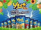 Yus Tamarind Juice 14.1 oz - Jugo Con Sabor A Tamarindo