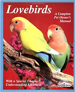 4282222077de Lovebirds  Everything About Housing