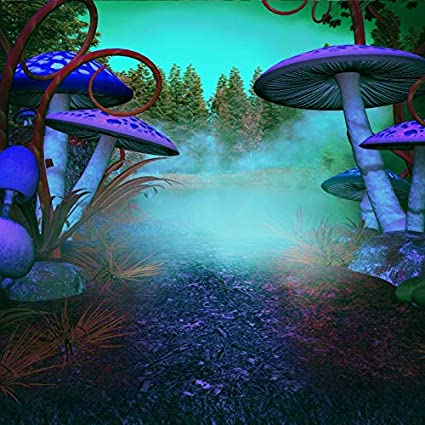 baocicco dreamlike forest gloomy mushroom backdrop 10x10ft vinyl photography backgroud foggest trees magical forest halloween horror
