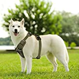 ENJOY PET Dog Harness Two Leash Attachments No Pull Vest Harness for Car, Vehicle Harness for Safe (L, Green)
