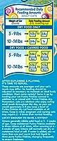 Friskies Dry Cat Food