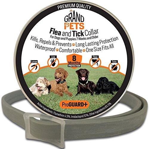 Flea Tick Collar Dogs Puppies