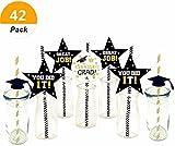 (Set of 42) Sakolla 2018 Graduation Stars Cheers Worth The Hassle Paper Straw Decor Striped Decorative Straws Graduation Favors