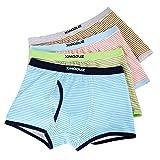 Xiaomaoduizhang Toddler Boys Briefs Value 4-Pack Underwear Percy Teens Basic Classic Underwear Stripe 120cm