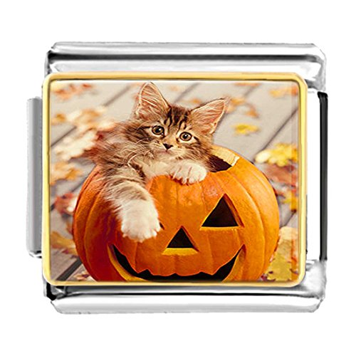 GiftJewelryShop Gold Plated little cat in Halloween pumpkin Bracelet Link Photo Italian Charms (Halloween Pugster Pumpkin)