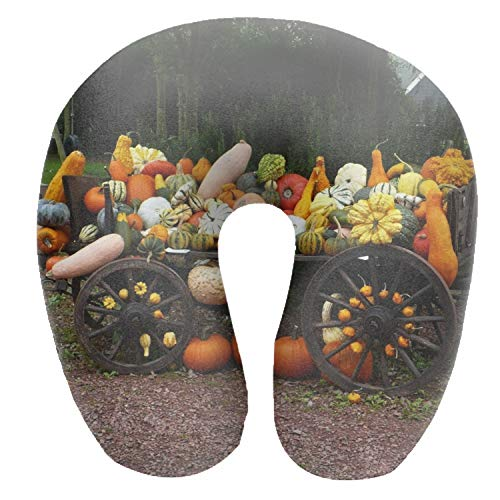 Dimanzo Travel Pillow - Supports Head and Neck - Perfect Neck Pillow for Sleeping On The Go - Vehicle Pumpkin Crop Grades Variety Autumn Print