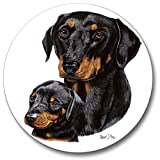 Doberman Pinscher Auto Coaster, Single Coaster for Your Car