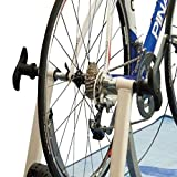 Joan Quick Release Rear Wheel Skewer for Trainer