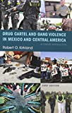 Drug Cartel and Gang Violence in Mexico and Central America: A Concise Introduction