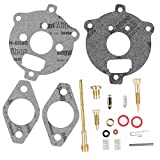 HIPA 394693 295938 398235 Carburetor Overhaul Kit for Briggs & Stratton 7 - 9 HP horizontal up-draft float carburetors