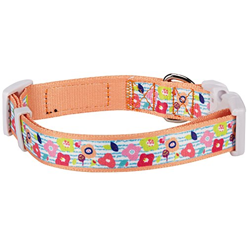 Blueberry Pet 9 Patterns Easter Spring Flowers and Charcoal Stripes Designer Dog Collar in Apricot, Small, Neck 12