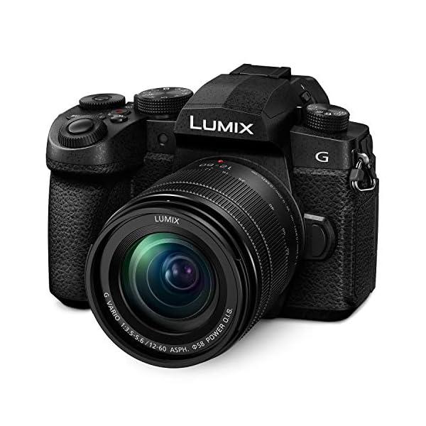 RetinaPix Panasonic Lumix G DC-G95M 20MP 4K Mirrorless Camera with LUMIX G Vario 12-60mm Lens