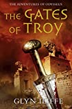 img - for The Gates of Troy (Adventures of Odysseus) book / textbook / text book