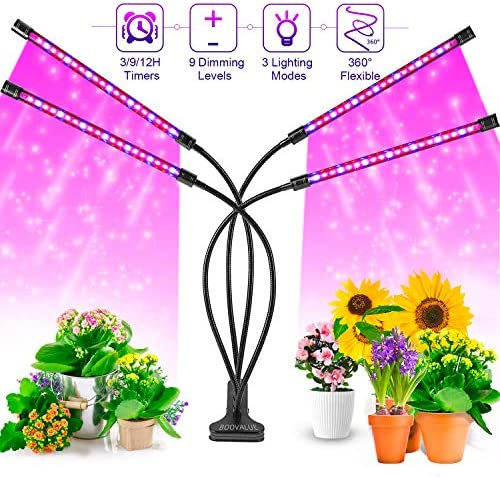 IMAGE Grow Light, Auto On off 72W 144 LED Grow Light Bulbs Red Blue White Spectrum 10 Dimmable Levels Plant Grow Lights with 3 6 12H Timer, Adjustable Gooseneck and Base Clip for Indoor Succulent Plan
