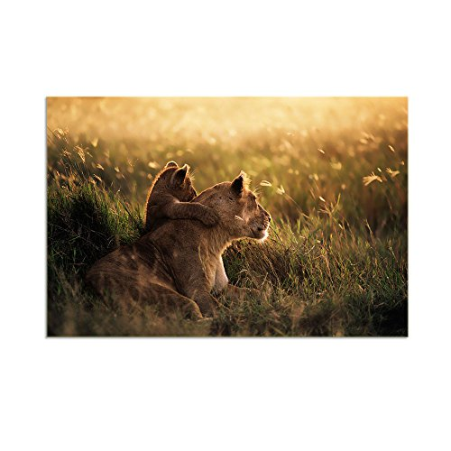 (KALAWA Modern Large Painting Lions Pictures Prints On Canvas Animal Poster Prints Animal Pictures Artwork for Living Room Framed Strethed Ready to Hang (24''W x 36''H) )