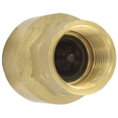 "W.E. Anderson® Brass Inline Check Valve, BICV-0N00, 1/4"" Connection, 4.55 Cv Value from Dwyer Instruments, Inc."