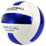 Jesn Sport Official Size Soft Touch Children's Kid's Toy Volleyball, Add On for Sports Playsets (White/Blue) by Toy Balls