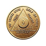 9 Month Bronze AA (Alcoholics Anonymous) – Sober / Sobriety / Birthday / Anniversary / Recovery / Medallion / Coin / Chip by Generic