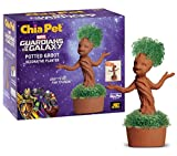 Chia Pet Potted Groot Decorative Pottery Planter, Easy to Do and Fun to Grow, Novelty Gift, Perfect for Any Occasion. Marvel Guardians of The Galaxy