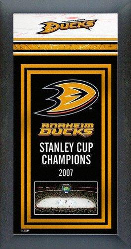 Photo File Anaheim Ducks Framed Team Championship Series