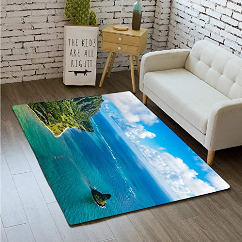 nting Aerial View of Kualoa Point and Chinamans Hat Kaneohe Bay Bathroom Carpet Flannel Foam Shower mat Absorbent Living Room Kitchen Door Carpet Floor mat ()