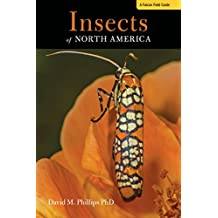 Insects of North America: A Field Guide